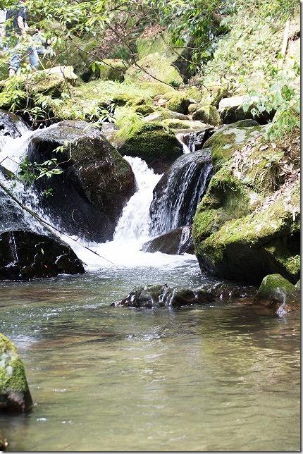 野河内渓谷の流れ