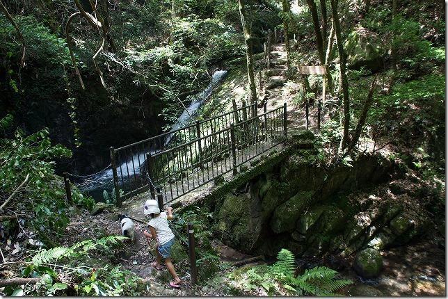 野河内渓谷の矢渕滝