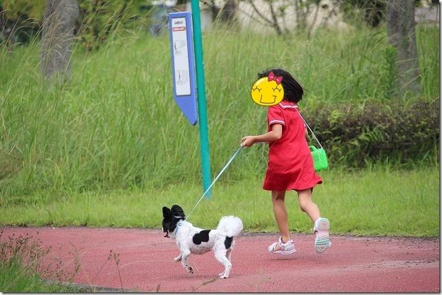 今津運動公園を犬と子供