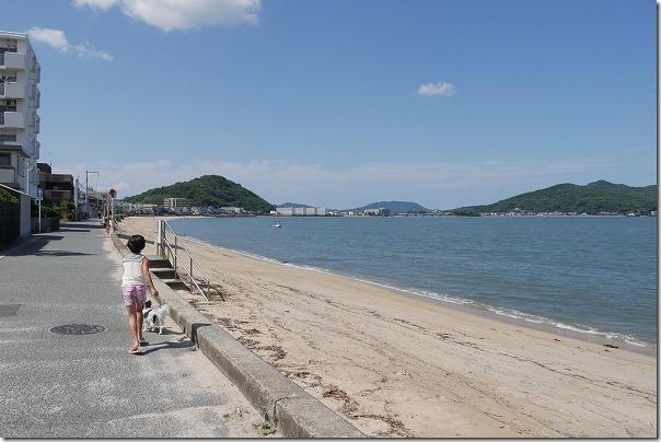 今宿,犬,砂浜,糸島