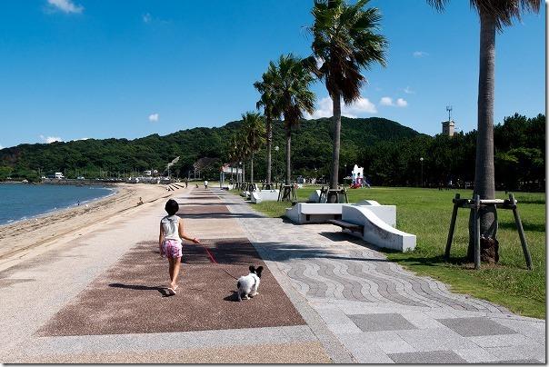 今宿、長垂海浜公園を犬の散歩
