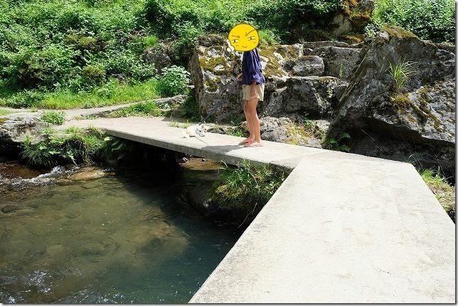玖珠・慈恩の滝の遊歩道を犬と散策