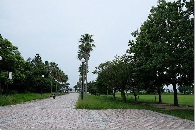 福岡市西区の小戸公園の様子