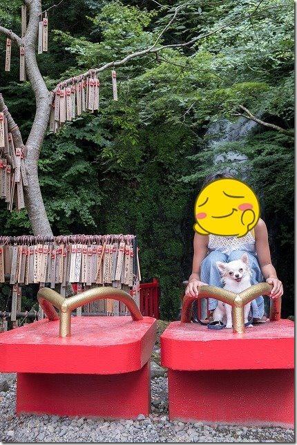 桂茶屋近くの天狗の滝で犬と下駄で記念撮影