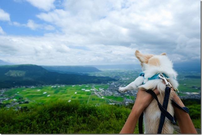 犬(チワワ)を連れて阿蘇 かぶと岩展望台