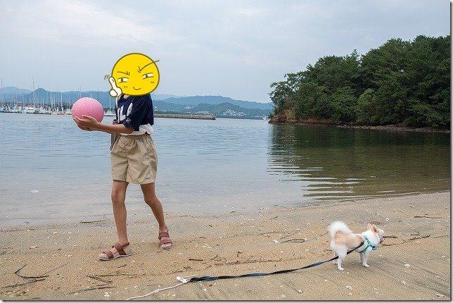 小戸公園の砂浜へ犬と子供と