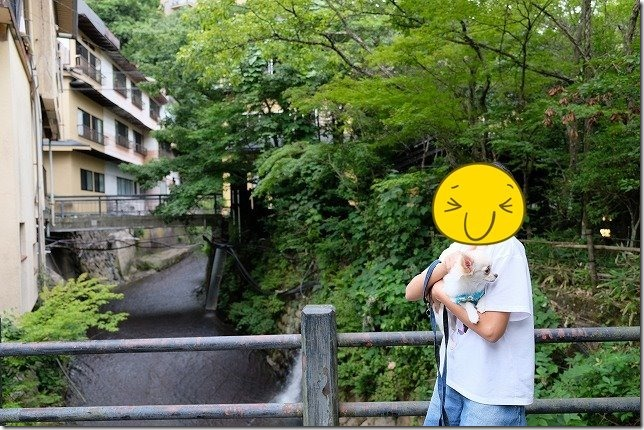 筋湯温泉の川、散歩