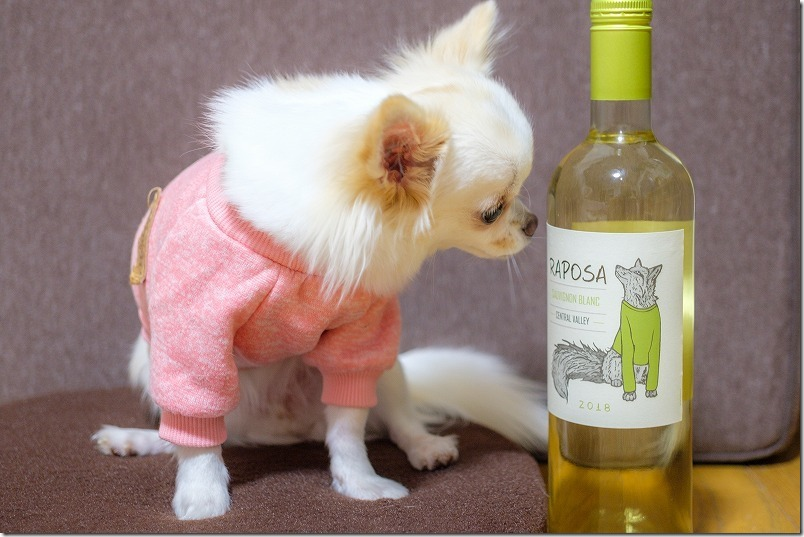 チワワとワインのマークのマッチング