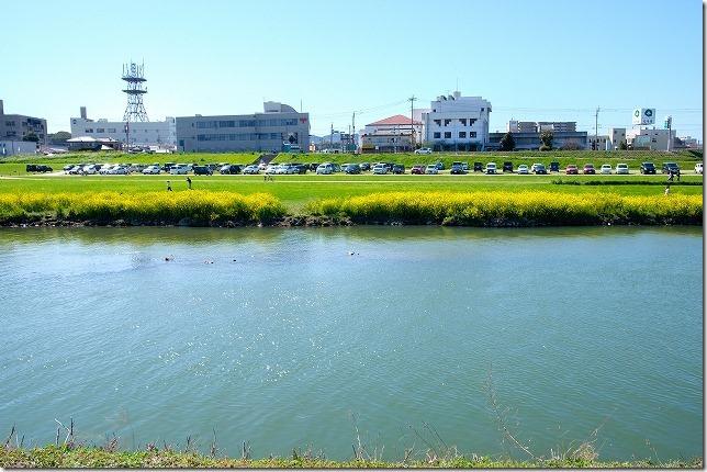 直方チューリップ畑の駐車場(遠賀川河川敷)