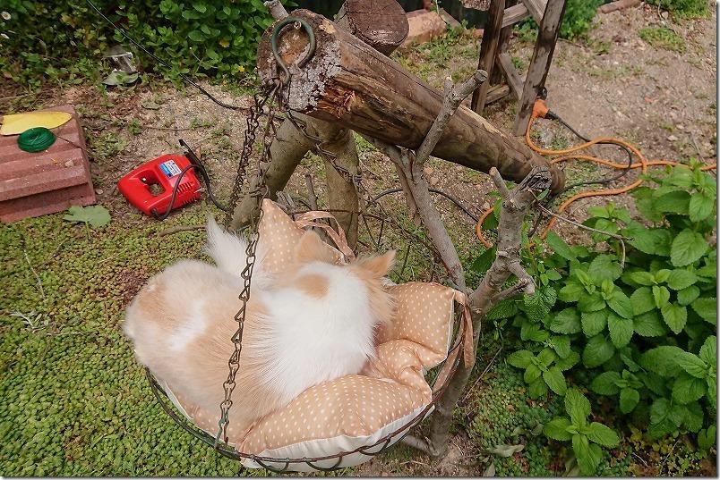 犬用(チワワ)ハンモックをDIYで作成した材料
