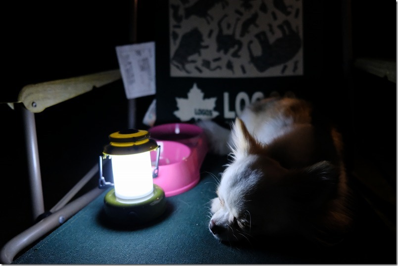 糸島HIDEAWAY、sunset、campの夜、犬はおやすみ