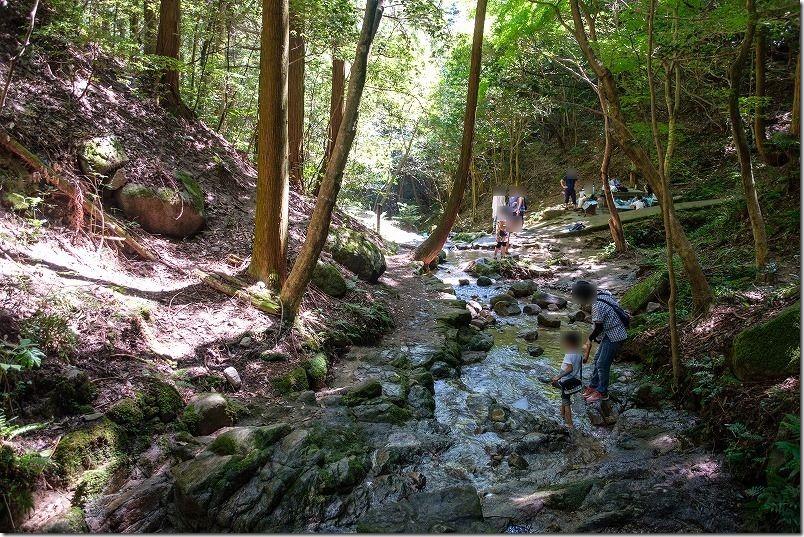 油山市民の森で子供も水遊び
