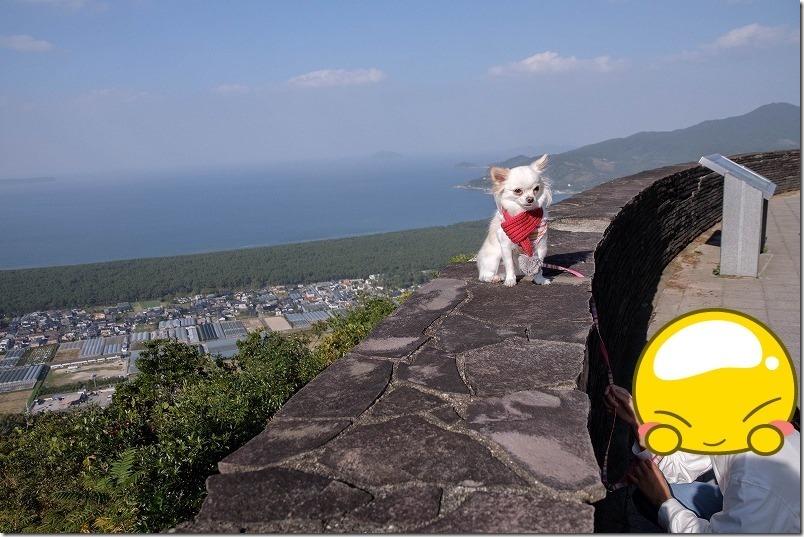 鏡山、ひれふり展望台からの展望と犬・チワワ