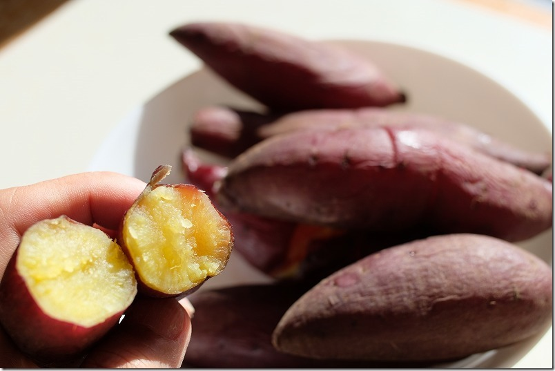 チワワ「こむぎ」の好物のお芋