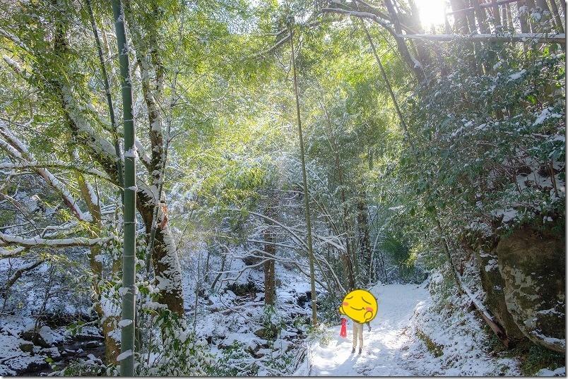 野河内渓谷の雪景色、福岡市早良区