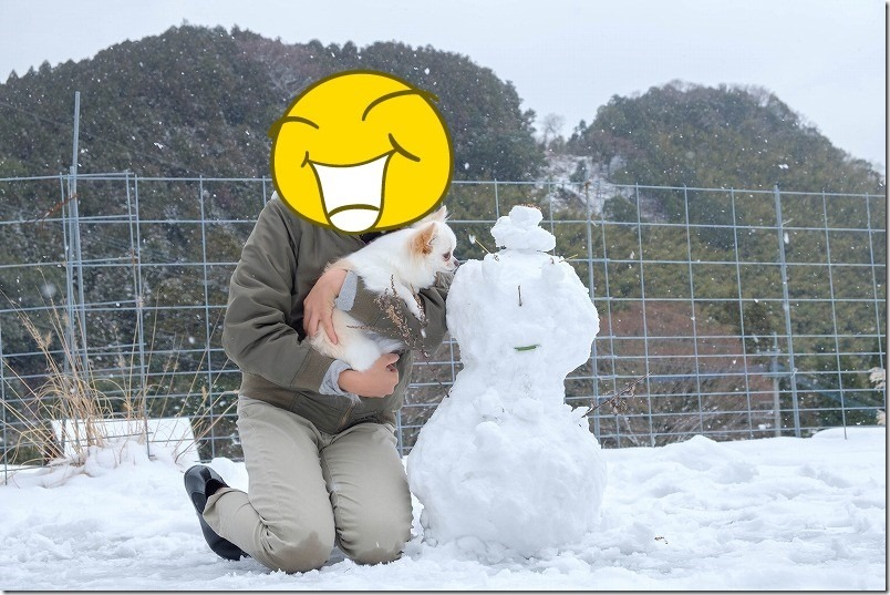 雪だるまとチワワ