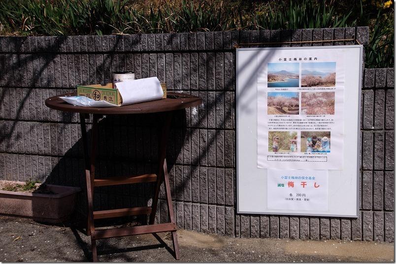 糸島,小富士梅林で梅干しやジャムを購入