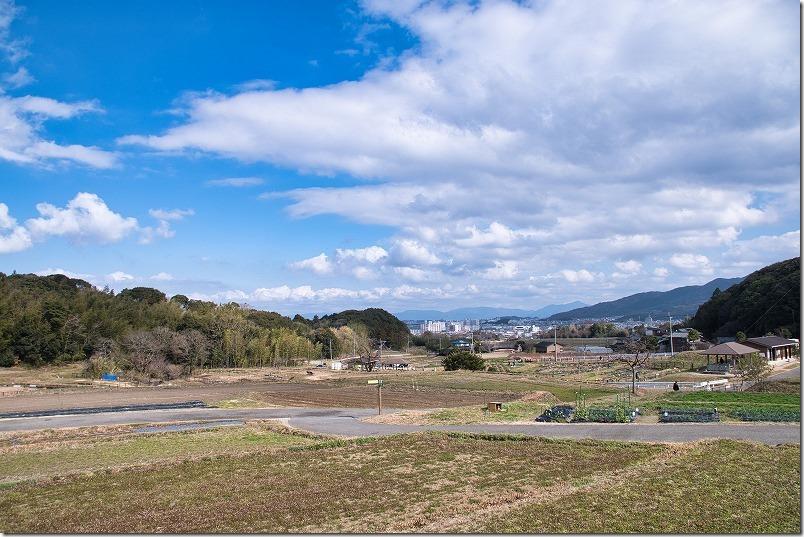金武の里公園の田畑