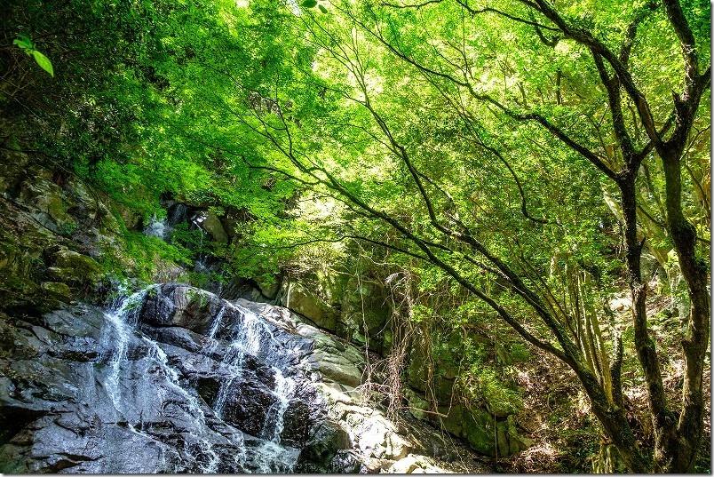 糸島・千寿院の滝と緑