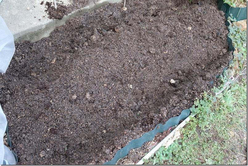 下仁田ネギの苗を植える溝